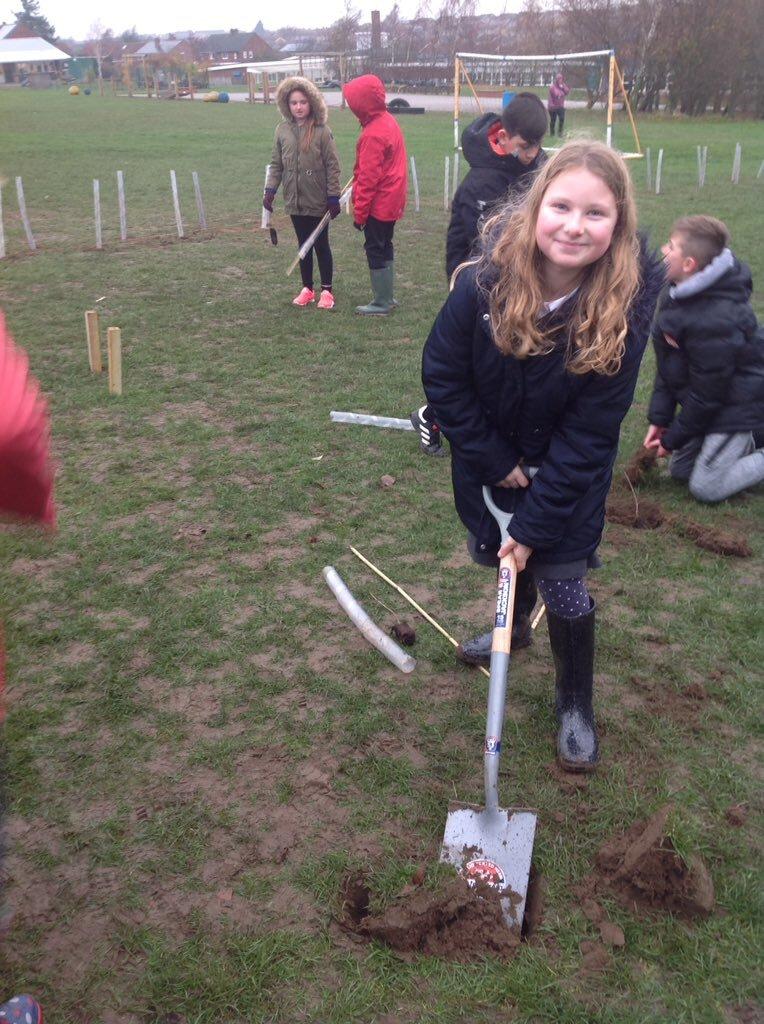 Tree Planting 19