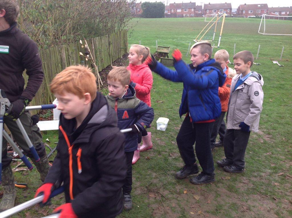 Tree Planting 11